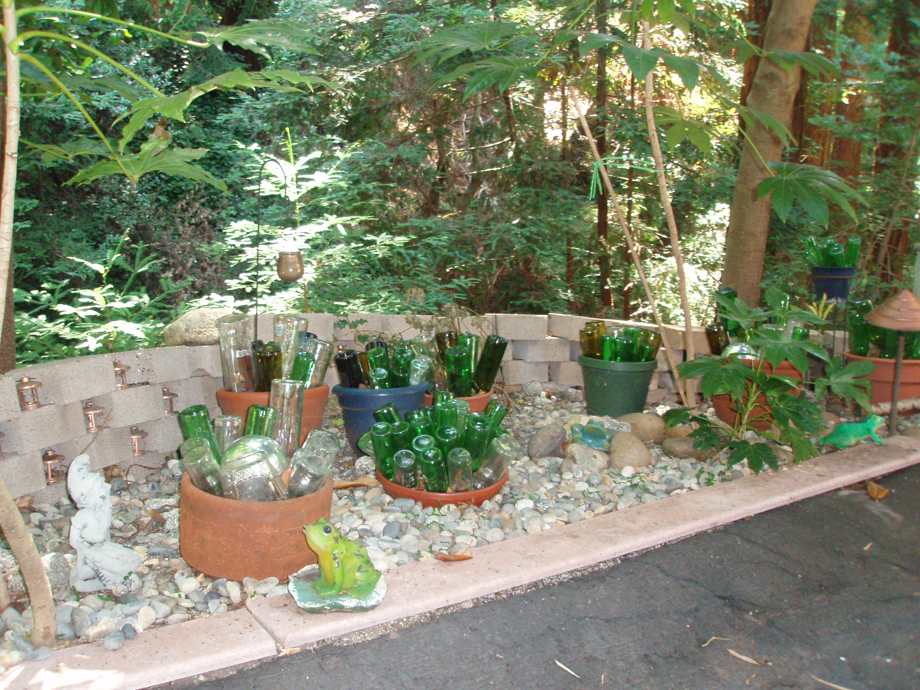 Gardening In Bottle : Bottle garden  Gardening Tips for the Santa Cruz Mountains