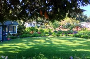 lawn_perennial-borders