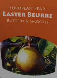 Easter_Buerre_pear