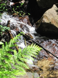 Reggiardo_waterfall