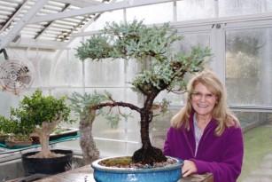 Jan_bonsai