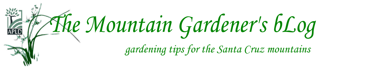 Gardening Tips for the Santa Cruz Mountains