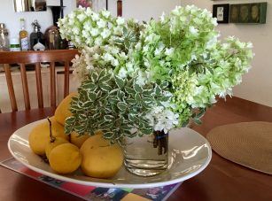 bouquet_hydrangea_pittosporum